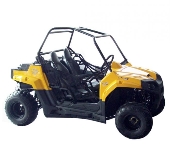 GM Ranger RZR 170