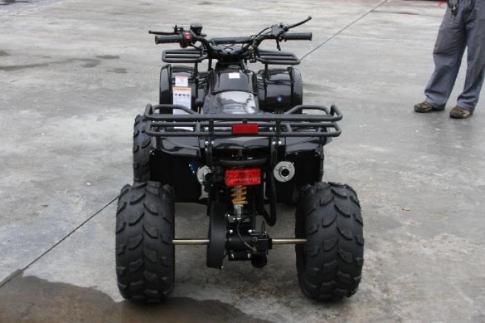 Hamer HT-125 Y 006 (2013)