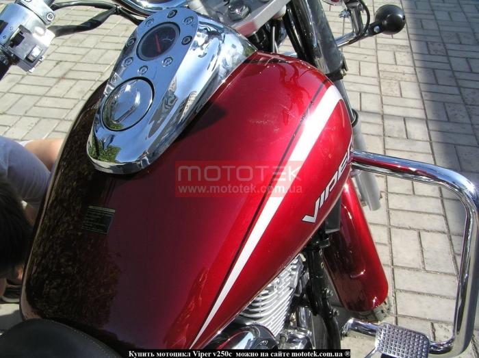 viper cruiser 250