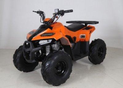Квадроцикл Comman ATV 110cc B5 MudHawk