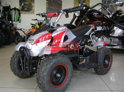 Электроквадроцикл Profi 500W