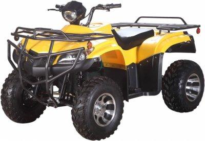 Электроквадроцикл Hamer Ultimate 3000