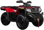 Квадроцикл HISUN FORGE 250