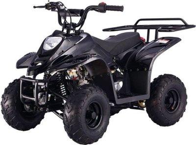 Квадроцикл HAMER Panda 110