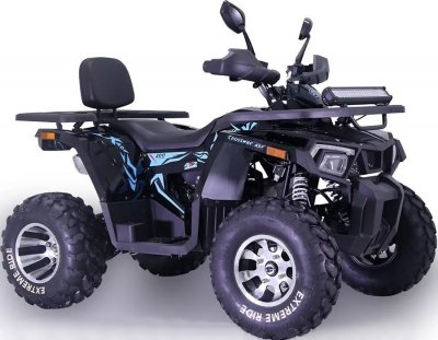 Квадроцикл TAOTAO SHARX 200