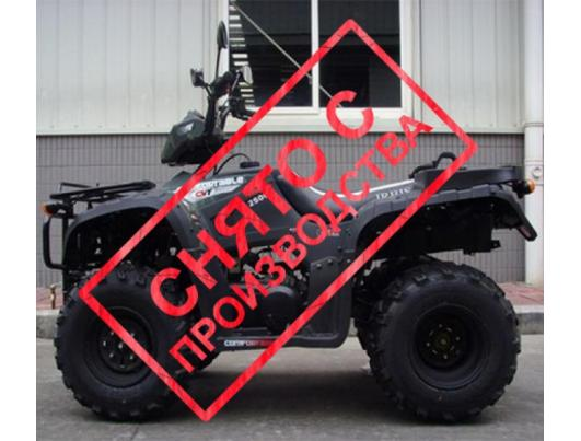 Квадроцикл Bashan ATV BS250S-24